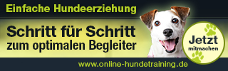 online hundeschule *